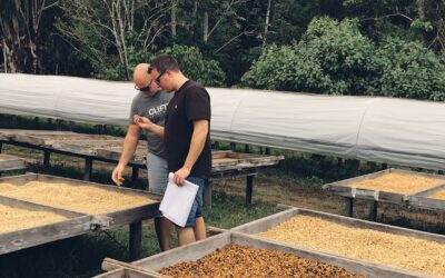 Customer Story: Clifton Coffee | Connect and Collaborate